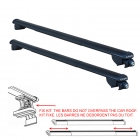 IRON 3 BM06 FARAD SHORT telescopic roof bars